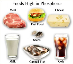 Phosphorus-Foods